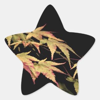 Acer Star Sticker