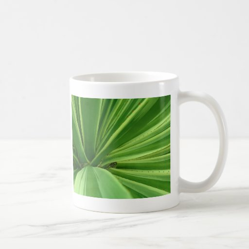 Acercamiento del cactus tazas de café