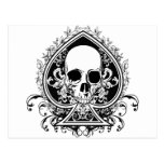 Aces Skull Postcards
