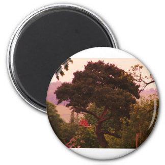 Acessories del árbol de Nidderdale Imán Redondo 5 Cm