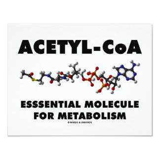 Acetyl-CoA Essential Molecule For Metabolism Invitations