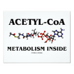 Acetyl-CoA Metabolism Inside (Chemical Molecule) Personalized Announcement