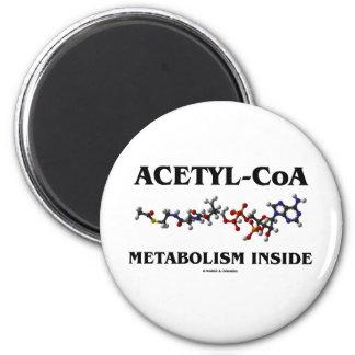 Acetyl-CoA Metabolism Inside (Chemical Molecule) Refrigerator Magnet