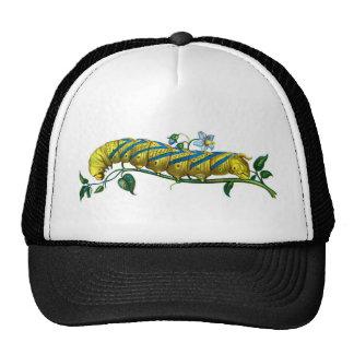 Acherontia atropos caterpillar trucker hat