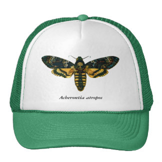 Acherontia atropos trucker hat