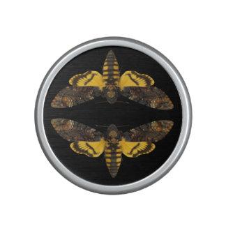 Acherontia Lachesis - Death's-head Hawkmoth Speaker