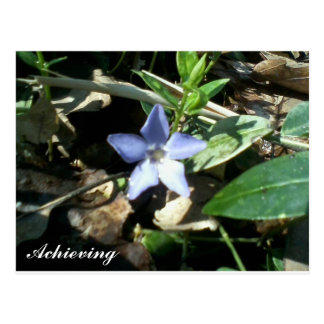"""Achieving"" Postcard"