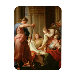 Achilles at the Court of King Lycomedes with his D Rectangular Photo Magnet