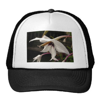 Acidanthera or Peacock Gladiolus Trucker Hat