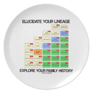 Aclare su linaje exploran sus antecedentes familia plato