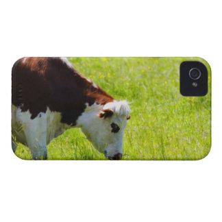 Acobarde el pasto en un campo, el valle del Loira, Funda Para iPhone 4