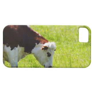 Acobarde el pasto en un campo, el valle del Loira, iPhone 5 Funda