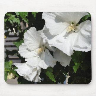 acoger con satisfacción las flores blancas mousepads