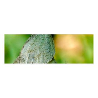 Acoplamiento de las mariposas de Leptosia Nina de Tarjetas De Visita
