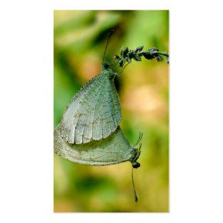 Acoplamiento de las mariposas de Leptosia Nina de Plantilla De Tarjeta De Negocio