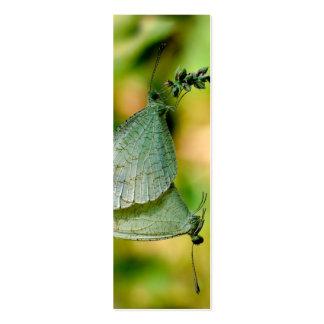 Acoplamiento de las mariposas de Leptosia Nina de Tarjetas De Negocios