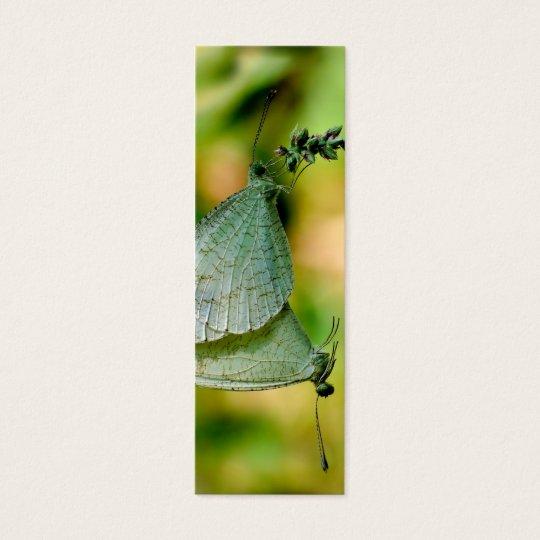 Acoplamiento de las mariposas de Leptosia Nina de Tarjeta De Visita Pequeña