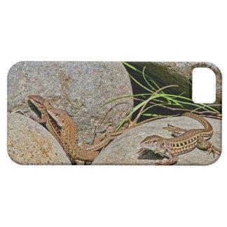 Acoplamiento de los lagartos iPhone 5 cobertura