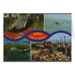 Acores Caca A Baleia, Vintage Greeting Card