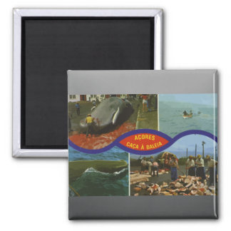 Acores Caca A Baleia, Vintage 2 Inch Square Magnet
