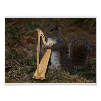 Acorn Band member and Harpist Poster