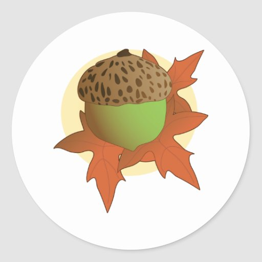 acorn classic round sticker
