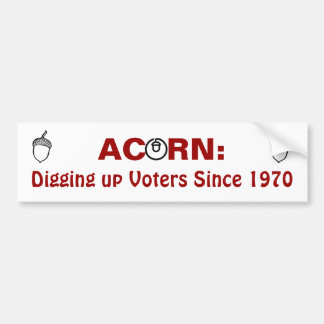 Acorn:Digging up Voters Since 1970 Bumper Sticker