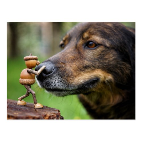 Acorn elf with a dog postcard