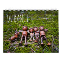 Acorn Elves calendar with funny photos