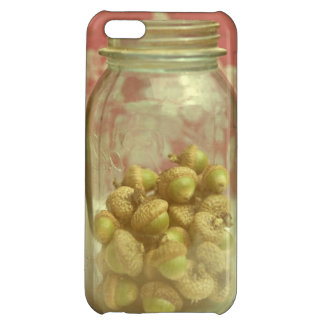 Acorn Mason Jar Pink Vintage iPhone Case Cover For iPhone 5C