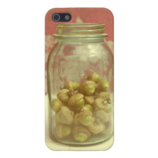 Acorn Mason Jar Pink Vintage iPhone Case iPhone 5 Case
