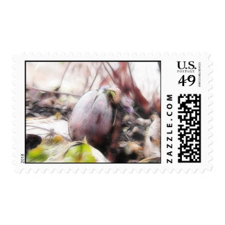 Acorn Sprout In The Early Spring Garden Stamps