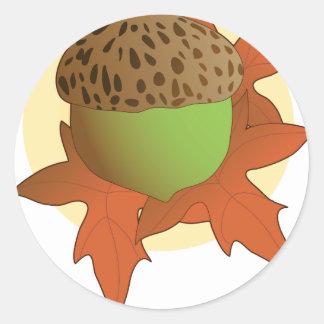 acorn round stickers