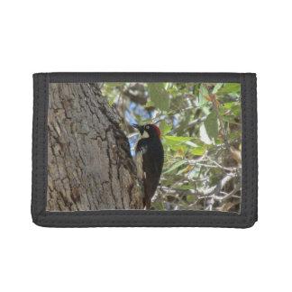 Acorn Woodpecker Wallets