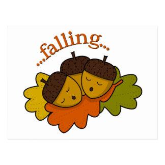 acorns falling (asleep) postcard