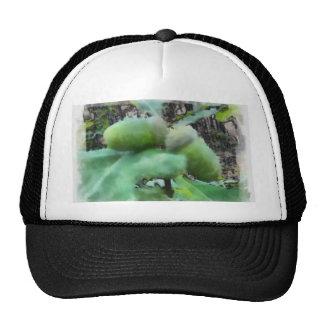 Acorns Trucker Hat