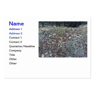 Acorns In The San Bernardino Mountains Business Cards