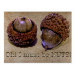 Acorns - Oh I Must Be Nuts Postcards