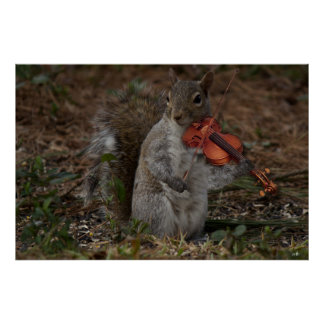 Acorn's Squirrels member w/ his viole Poster