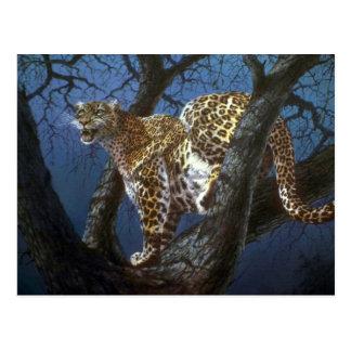 Acosador de la noche leopardo tarjetas postales