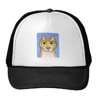 Acose el gato gorra