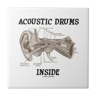 Acoustic Drums Inside (Anatomy Of Human Ear) Tiles