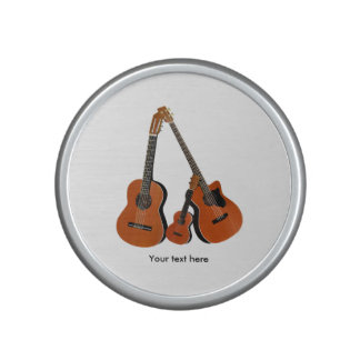 Acoustic Instruments Speaker
