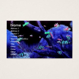 Acquarium Profile Card