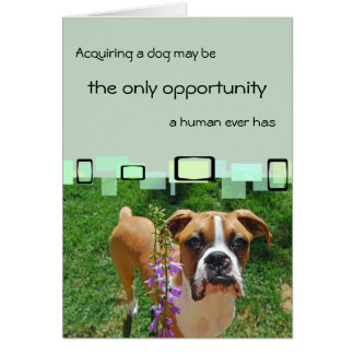 Acquiring A Dog May Be The Only Opportunity Greeting Cards
