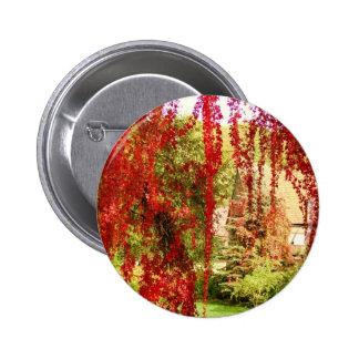 Acre, Autumn/ Pin