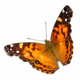 Acrílico del ~ de señora Butterfly Fotoescultura Vertical