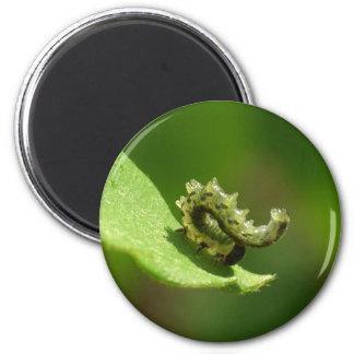 Acrobat 2 Inch Round Magnet