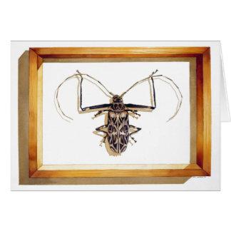 """""""Acrocinus longimanus"""" Insect Watercolor Card"""