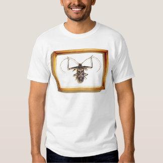 """""""Acrocinus longimanus"""" Insect Watercolor Shirt"""
